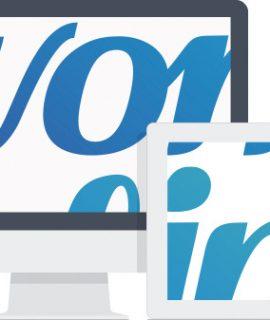 Evonline - Agência de Marketing Digital