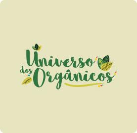 d9ca2c552 Criação de Nome para Empresas em Curitiba | Agência Evonline